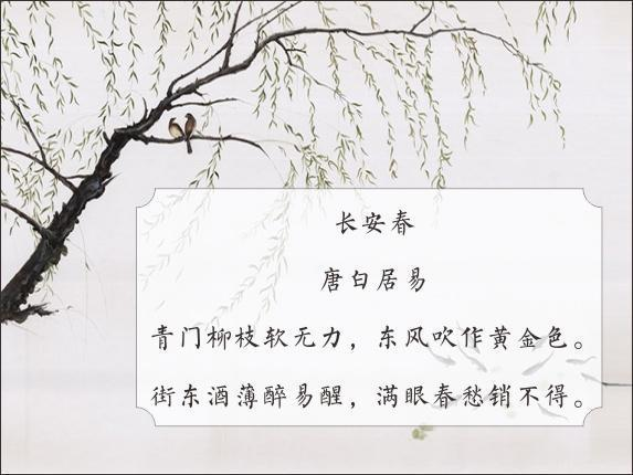长安春.jpg